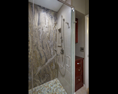 Accessible Guest Shower