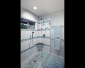 Accessible Rollin Shower